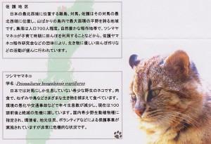 佐護郵便局からのお手紙